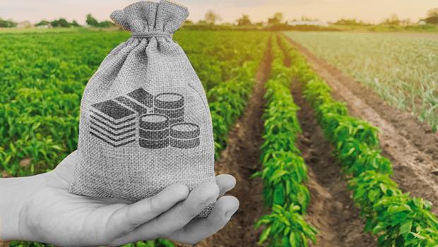 Isenção e redução de impostos sobre agrotóxicos geram prejuízos de quase R$ 10 bilhões