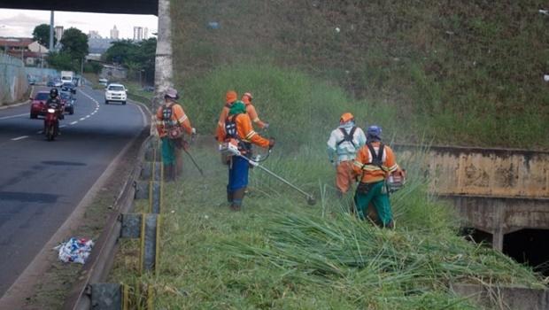 Prefeitura cria força-tarefa para limpar margens da Marginal Botafogo e da Perimetral Norte