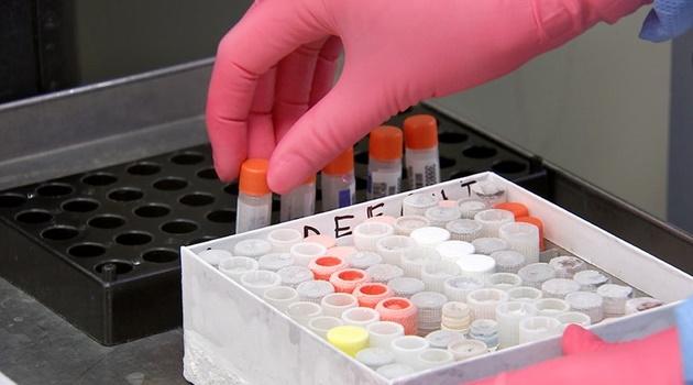 HCamp tem 11 óbitos em investigação por suspeita de Covid-19
