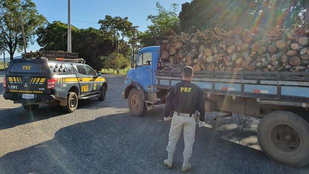 Carga de madeira nativa do cerrado é apreendida em rodovia