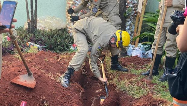 Mulher confessa ter matado e enterrado o marido no jardim, em Goiânia