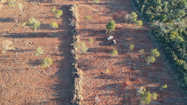 UFG lança plataforma de monitoramento do desmatamento no Cerrado
