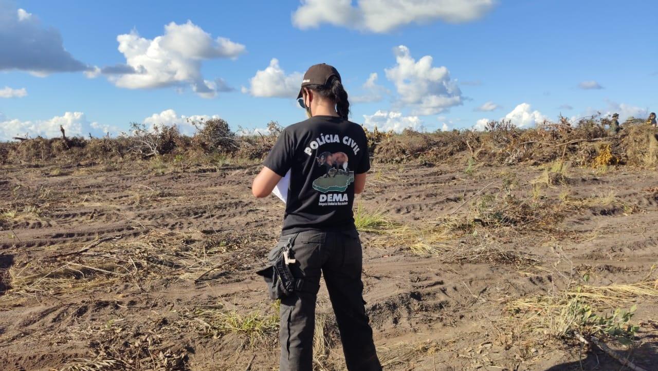 Proprietária de fazenda na região Cavalcante é multada por desmatamento