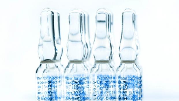 Potencial vacina brasileira contra Covid-19 começa a ser testada em animais