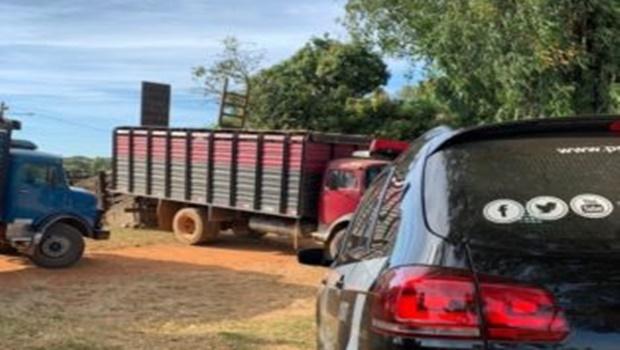 Polícia recupera 25 cabeças de gado furtadas em Bela Vista