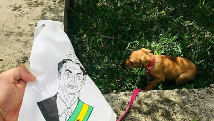 Saco para coleta de cocô de cachorro contém o rosto do presidente Bolsonaro