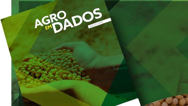 Apesar da crise, mercado de grãos está aquecido e Goiás se beneficia