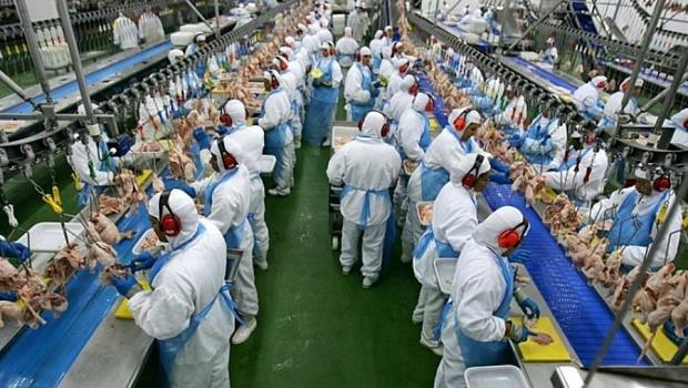 Covid-19: Após China divulgar resultado positivo para produto brasileiro, Filipinas suspendem compra de frango do Brasil