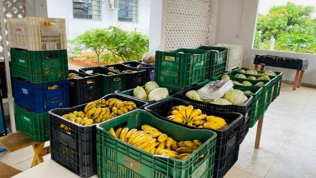 Goiás aplicou mais de R$ 136 milhões para manter alimentação dos estudantes durante a pandemia