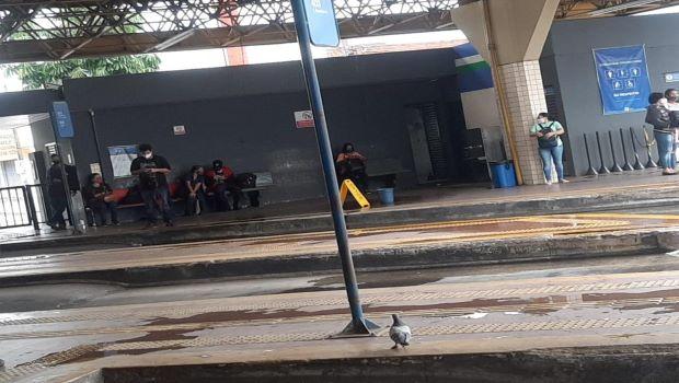 Paralisação de quase 5 mil funcionários deixa Goiânia sem transporte público e presidente do SET rebate farsa