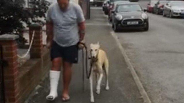 Cachorro manca imitando o dono que mancava, talvez para mostrar empatia