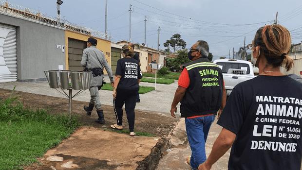 Homem é preso praticar maus-tratos contra animais em Aparecida de Goiânia