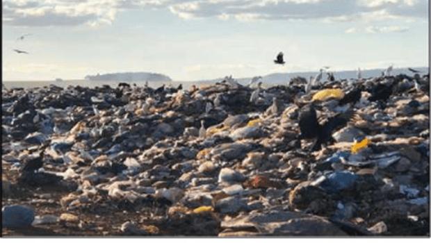 MP obtém bloqueio de bens de envolvidos na máfia do lixo em Itumbiara