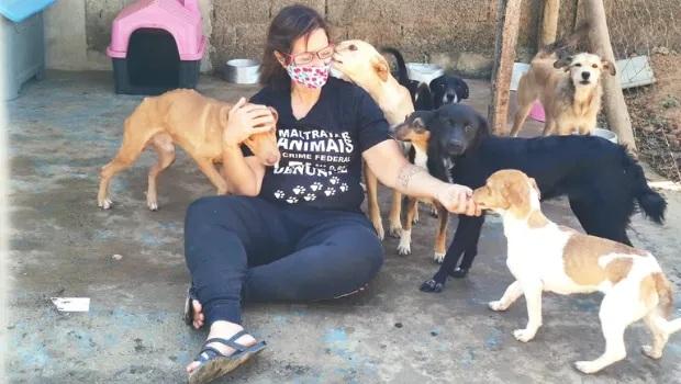 Pedidos de resgate de animais se multiplicam em abrigos de Goiânia
