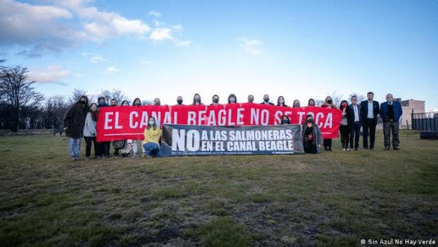 Argentina proibe criação de salmão