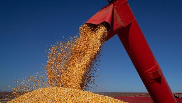 Goiás está na 6ª posição entre os estados com maior valor de produção agrícola total e em 4º no ranking de grãos