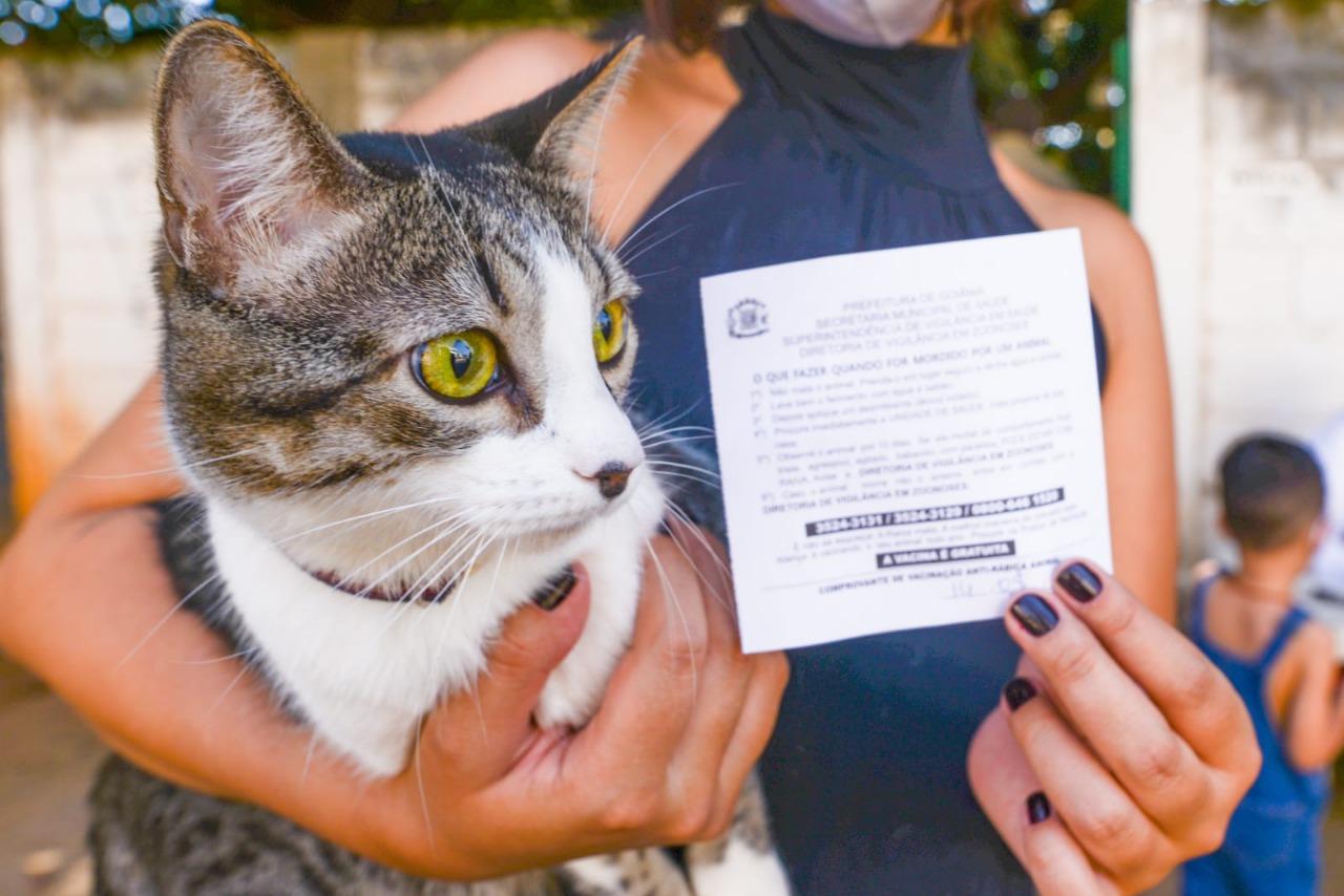 Goiânia realiza campanha de vacinação contra raiva animal; veja onde levar seu pet
