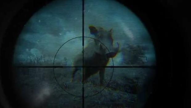 Licenças para caçadores mais que triplica durante governo Bolsonaro