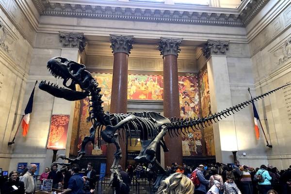 ニューヨーク 博物館 ナイトミュージアム