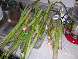 asparagus-sink1