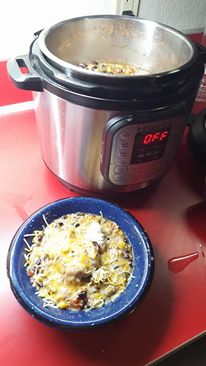 Instant-Pot-Chicken-Everything