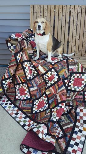 Fair-and-square-quilt-1