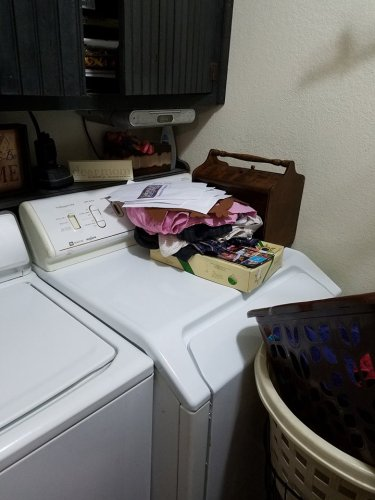 laundry-15