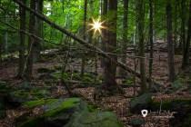 Přírodní rezervace - Na skalách