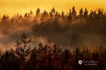 Přechod inverzní vrstvy oblačnosti v mlhy v zapadajícím Slunci
