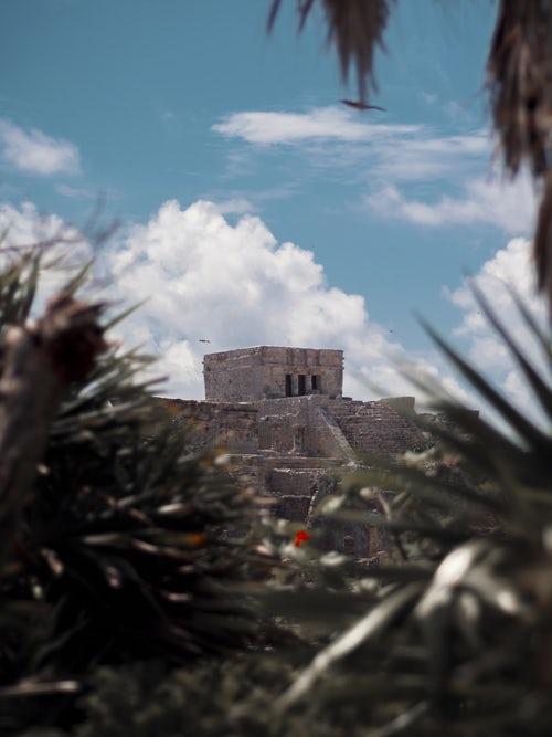 Mexico 3