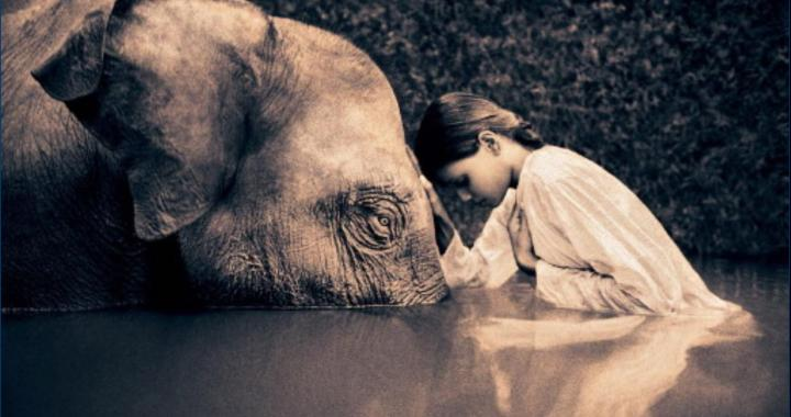 Escucha activa, inteligencia emocional, empatía en coaching y psicoterapia