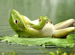 Hipnosi i relaxació. Hipnosi a Sabadell