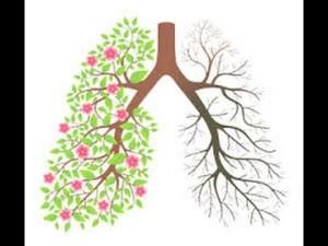 Incidencia del tabaco en el cáncer de pulmón. Estrategias para dejar de fumar, en Sabadell