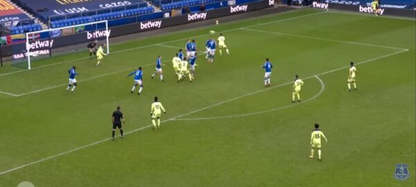 Callum Wilson headed goal v Everton