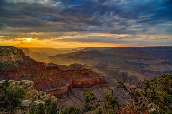 Undeterred Grand Canyon National Park Arizona Fine