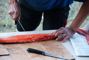 Salmon prepped for drying Lillooet