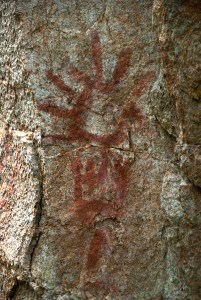 Stein Valley Pictograph