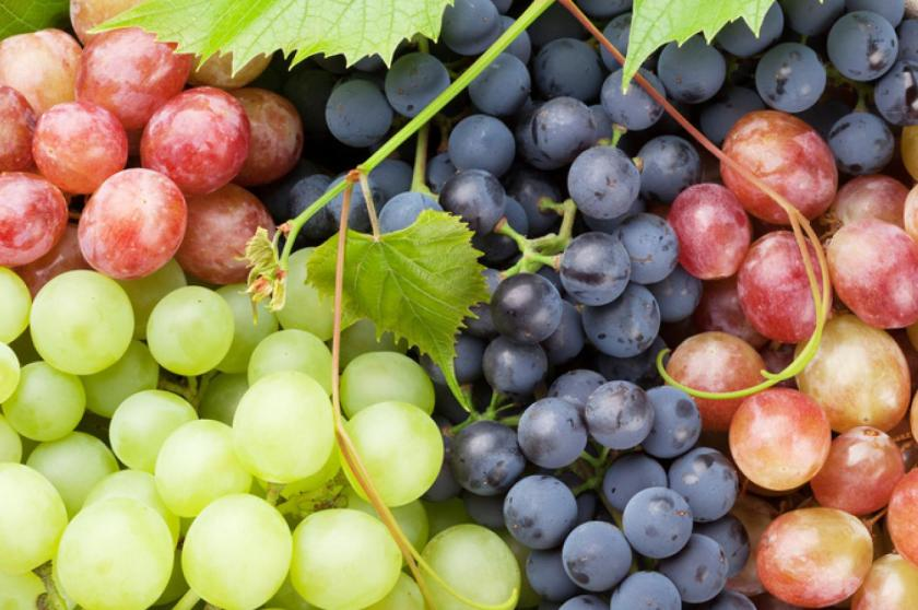 10 Healthiest & Nutritious Fruits