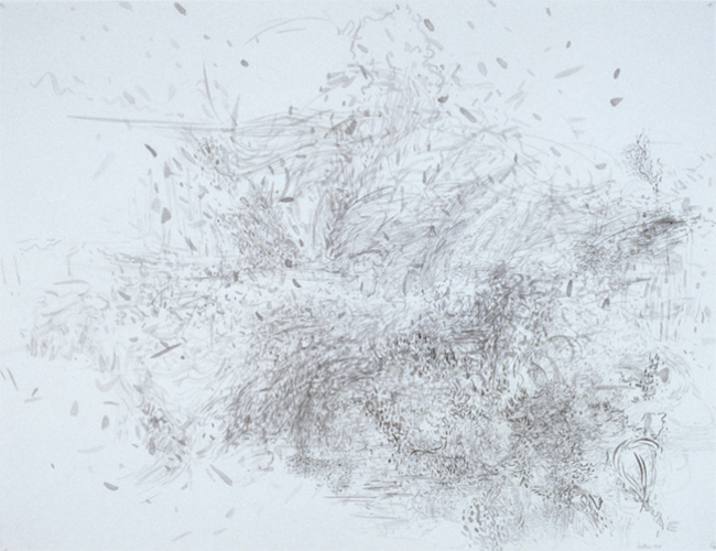 Unsettled, ink on paper, 20 x 26 inches, 1981. Private Collection.