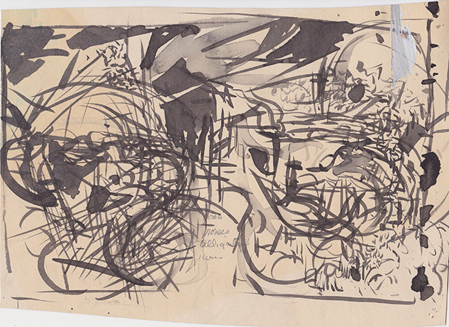 Horses, Boar, Alligator, Lions, indian ink and gesso on paper, 7 x 10.625 inches (irregular shape), 1978.