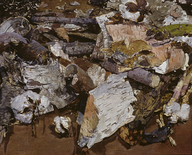 Still Life with Birch Bark, oil on linen, 22 x 18 inches, 1999. Private collection.