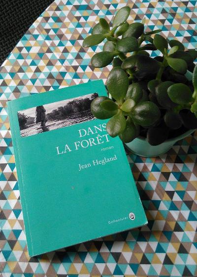 Dans la forêt, roman de Jean Hegland paru aux editions Gallmeister