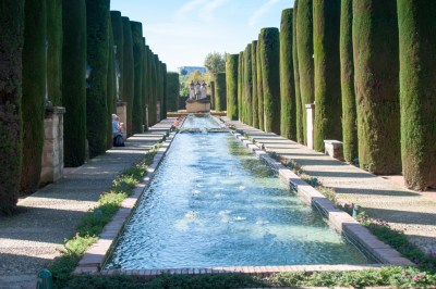 The gardens of the Alcazar.