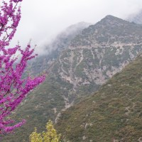 The Odyssey Revisited – Delphi to Karpenisi