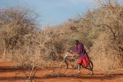 Amboselli Commute