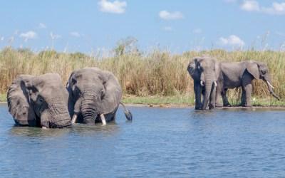 Malawi – Beyond the Lake