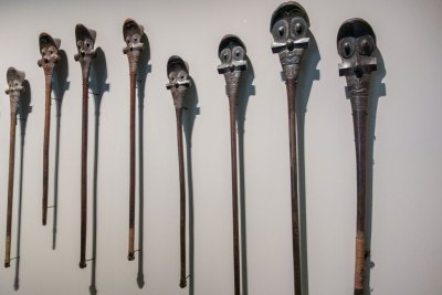 Matahoata - Display of war clubs from Marquesas Islands.