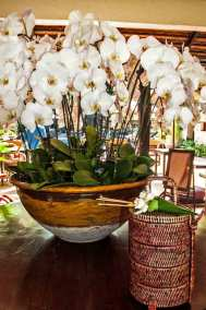 Food offering basket and orchids