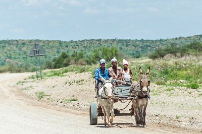 Local traffic in the Khomas Highlands.