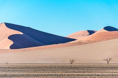 The dunes around Sossusvlei are ever shifting.